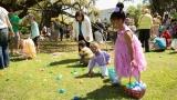 2016-NOMA-Egg-Hunt-Family-Festival