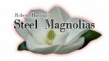 Friday-Nights-at-NOMA-Staged-Reading-of-Steel-Magnolias