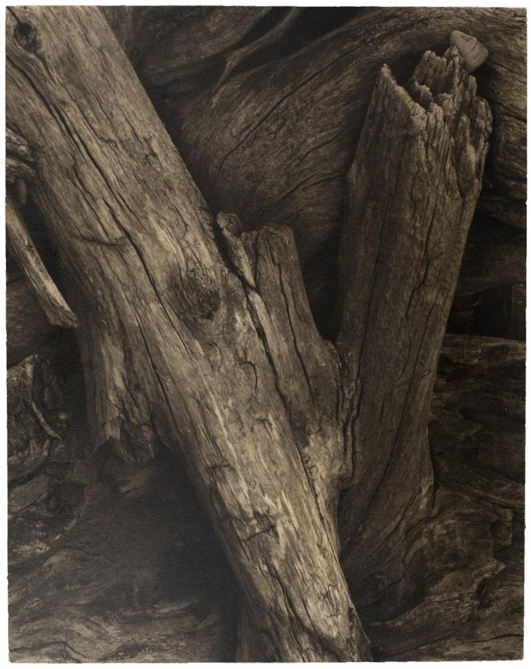 Maine 1928 Driftwood